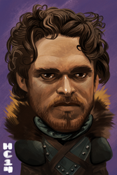 Robb Stark by hamdiggy