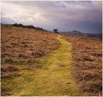 path to holwell by sassaputzin