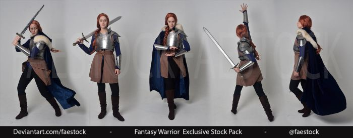 Fantasy Warrior - Exclusive Stock Pack by faestock
