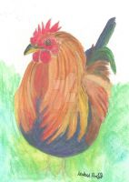 Cockerel by Isabelproffitart