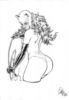 Catwoman 90`s Inks by renatomirre