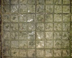 Stone paving 5 by jaqx-textures