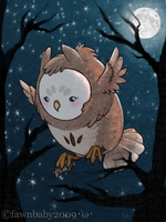 fluff owl, talons of death by mybirdy