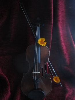 My lovely Violin by NanaLaila