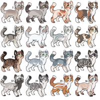 Cat adoptables | Auctions | CLOSED by DaisiesAdopts
