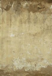 Wall Texture - 42 by AGF81