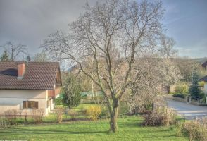 Garden view-my very first HDR by LunaticDesire