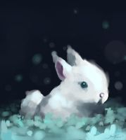 Request-Bunny by Diucturnal