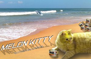 Melon Cat - Candolim Beach Goa by Peekofwar