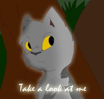 Take a Look at me. by meow-fluff