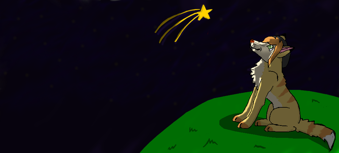 Shooting star by Wolf--Prime