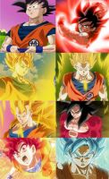 All of Goku's forms. by sonichedgehog2