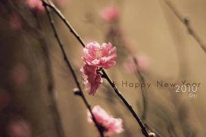Peach Blossom by Onisimple