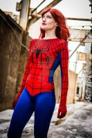Mary Jane Watson Spiderman by ScorpioConceptDesign