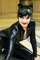 Catwoman 4 by Insane-Pencil