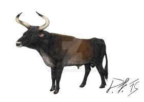 Indian aurochs / Bos p. namadicus by Pachyornis
