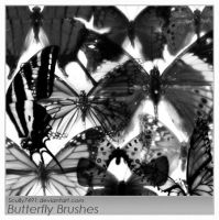 Butterfly Brushes by Scully7491