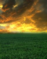 Premade Background 02 by Lunia-Stock