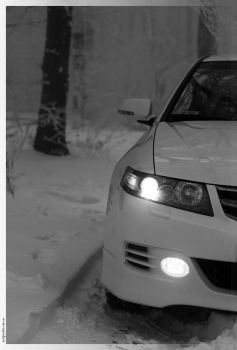 White on Snow_02 by hellpics