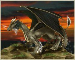 Black Dragon by Candy-Janney
