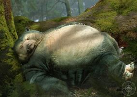 Snorlax - The Forest