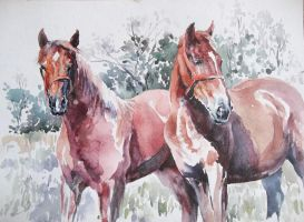 Red Horses in Watercolors. by CristinaGrinciuc