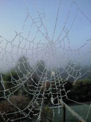 Web with a view by soopa-boombox-rox