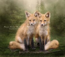 Foxes by ThelemaDreamsArt