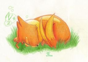 Buizel Sleeping