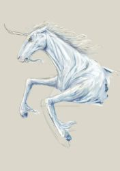 quick study: unicorn by Mademoiselle-Moder