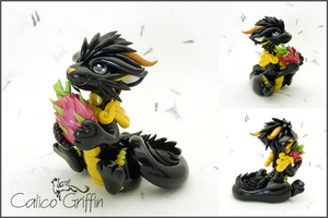 Dragon Fruit Cayo Dragon by CalicoGriffin
