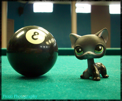 The Eight Ball by FuzziPhotography