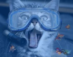 CAT DIVER by Daric74
