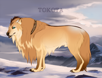 Tangaloa 25695 by TotemSpirit