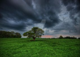 Storm in the Sky by DL-Photography
