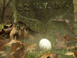 From the egg to the headstone by skipshot