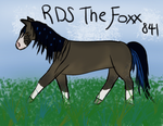 841 RDS The Foxx - extra for contest by letrainfalldown