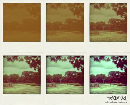 poladroid project by aulley