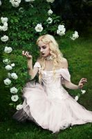 The white queen by ideea