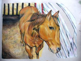 The Horse in progress by AlinaBond