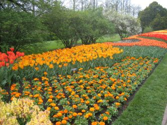 Longwood Gardens: 53 by jr----fave-resources