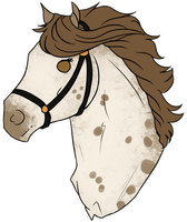 .:LEASE:. Madz Halter Show by Lemonegrass