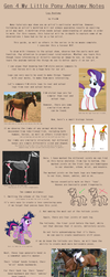 G4 MLP Anatomy Notes - Legs by Pix3M