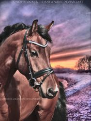 Vintage Sunset by Sapphires-Graphics
