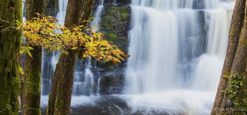 Waterfall Country: Autumn by Meowgli
