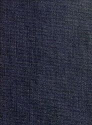 Blue Jean Clothing Texture by Enchantedgal-Stock