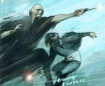 potter and voldemort by cuson
