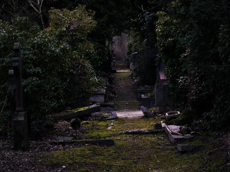 Old cemetery by xNatje