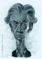 Sir Ian McKellen by ElectroNic0