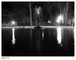 Fountain By Night by LeoNn